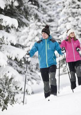 Лыжные походы